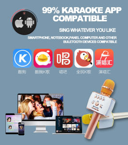 Android Karaoke Microphne Professional Microphone Handheld Wireless Bluetooth Karaoke Microphone pictures & photos