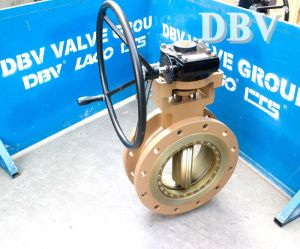 API Butterfly Valve Stainless Steel Butterfly Valve pictures & photos