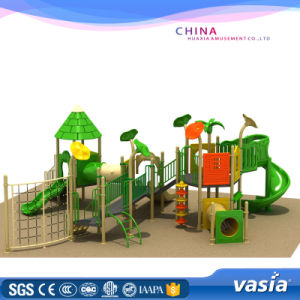Galvanized Pipe Amusement Park Equipment Outdoor Playground Product pictures & photos
