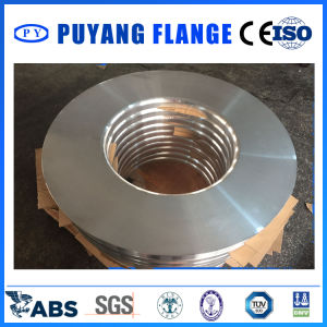 Aluminum 6061 Plate Ring Forged Flange (PY00111) pictures & photos