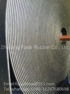 Cut Edge Conveyor Belt pictures & photos
