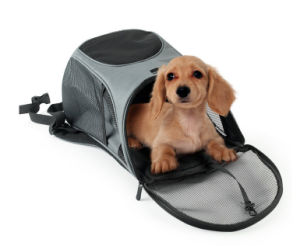 Easy Carry Pet Barrier Backpack Pet Dog Cat Bag, Travel Carrier for Small Dogs Cats, Comfortable Carrying Handles Dogs Cats Esg10036 pictures & photos