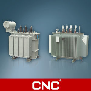 3 Phase Oil Immersed Power Transformer (ONAN) pictures & photos