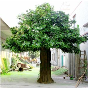 Artificial Large Ficus Tree Artificial Banyan Tree pictures & photos