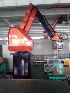Palletizing Robot pictures & photos