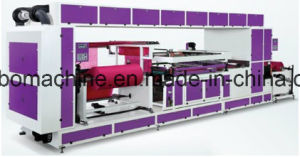 Lr-Sw1200 Non Woven Roll Fabric Screen Printing Machine pictures & photos