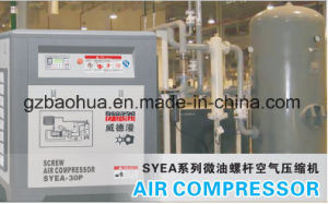 Air Screw Compressor/Screw Air Compressor pictures & photos