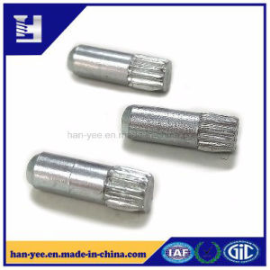 Knurling Small Size Stud OEM Fastener pictures & photos