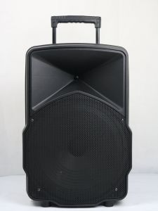 15inch Inch Plastic Speakers with Bluetooth Wireless Microphone Fy15-01 pictures & photos