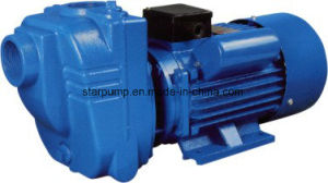 2HP Big Water Capacity Self-Priming Electric Water Pump pictures & photos