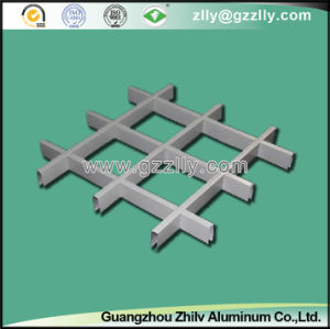Aluminum Grid Ceiling for Exterior Decoration pictures & photos