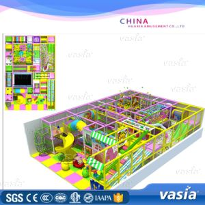 Naughty Fort Kids Indoor Playground Models pictures & photos