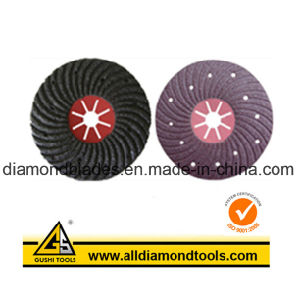 Semi-Flex Fibre Disc pictures & photos
