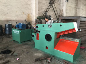 Q43-1000 Hydraulic Scrap Metal Shear pictures & photos