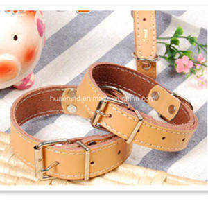 Leather Pet Collar and Leash pictures & photos