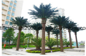 Garden Decoration Artificial Date Date Palm Tree Outdoor Coconut Palm Tree pictures & photos
