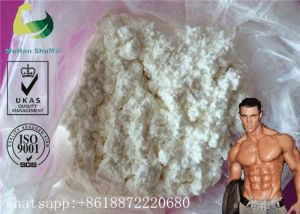 Tamoxifen Citrate Anti Estrogen Steroids Nolvadex Dosage for Bodybuilding 54965-24-1