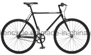700c Hot Sale Cheap Single Speed Fixed Gear Bike Bicycles Sy-Fx70012 pictures & photos