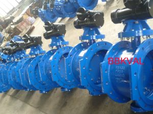 Double Eccentric Double Flange Butterfly Valve S13 S14 Pn10 Pn16 Pn25 pictures & photos