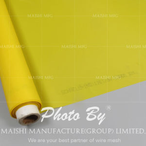 Polyester Screen Printing Mesh Factory pictures & photos