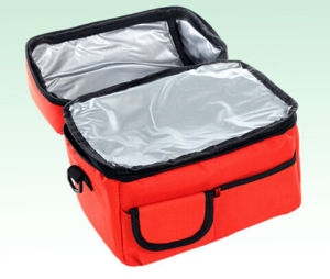 Custom Fashion High Quality Portable Cooler Thermal Bag pictures & photos
