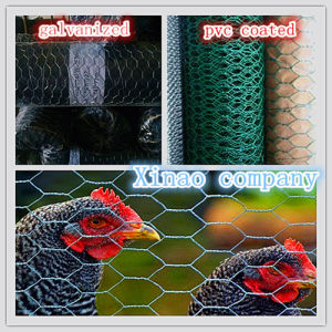 Malla Hexagonal Galv. Wire Diameter 0.7mm 0.8mm 0.9mm pictures & photos