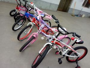 Kinds of Models Difference Size Kids Bikes pictures & photos