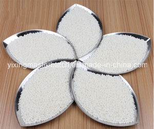PP PE LDPE LLDPE HDPE Masterbatches White Master Batch pictures & photos