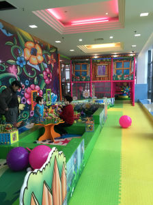 Jungle Theme Ce Standard Indoor Playground for Children pictures & photos