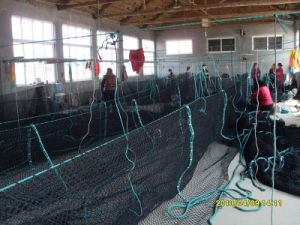 PE Knotless Fish Net (SDC17942_) pictures & photos