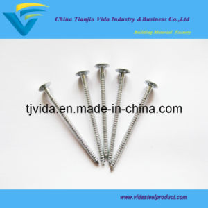 Galvanized Roofing Nails with Ring Shank pictures & photos