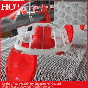 Hot Sales for Poultry Plastic Flat Net