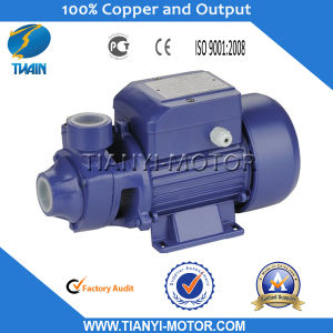 Qb90 Electric Water Pump 1.5HP pictures & photos