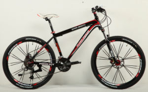 Good Quality Mountain Bike (FP-MTB-A019) pictures & photos