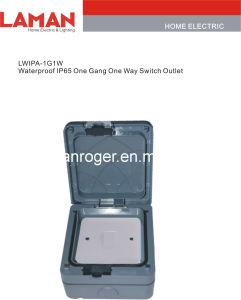 LWIPA-IP65 Waterproof Switch Outlet