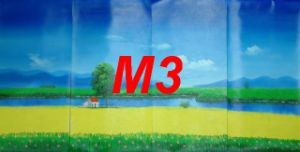 M3 Abstract 06
