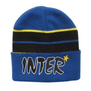 Reflective Knitted Hat pictures & photos