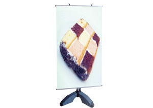 Display Stand Banner Outdoor Y Banner (DW-ZSB-Y 80*200CM) pictures & photos