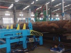 Automatic Logs Feeder/Log Feeder with Chain Conveyor pictures & photos