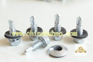Screw/Self Drilling Screw/Hex Head with Washer Self Drilling Screw pictures & photos