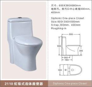 Ceramic Toilet (2110)