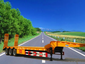 Lowbed Semi Trailers (CTY8460) pictures & photos