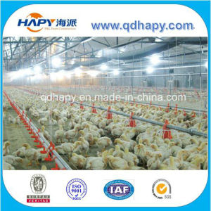 Full Set Automatic Poultry Equipment for Broiler Chicken Production pictures & photos