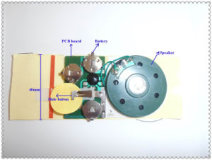 Sound Module, Mini Recordable Sound Modules for Promotion Item (ZXS-3192)