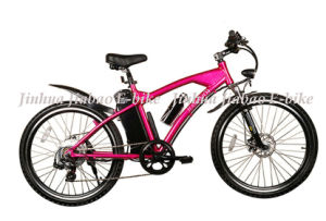 36V Li-ion EEC Brushless Mountain Electric E-Bike (JB-TDE01Z) pictures & photos