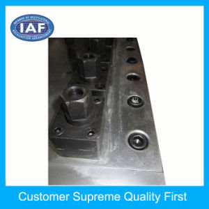 Plastic Extrusion Mould Factory Extrusion Making pictures & photos