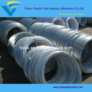 High Carbon Fence Wire (BWG4-BWG36) pictures & photos