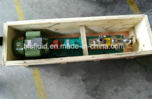 Stainless Steel Mono/Single Screw Pump pictures & photos
