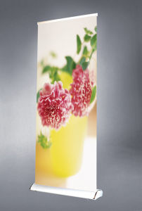 Display Stand-Roll up (DW-LD-1) pictures & photos