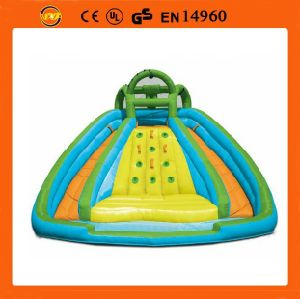 Inflatable Curve Water Slide with Pool, Curve Water Slide (Fl-S224)